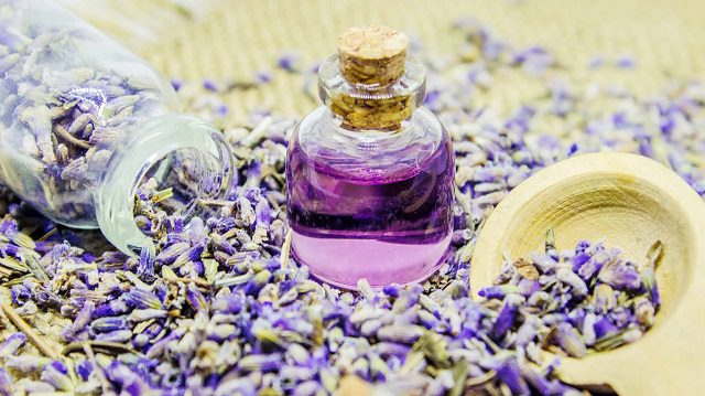 Lavender Oil for Heartburn