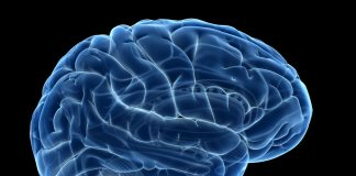 Why Not Try Brain Training for a Healthy Mind?